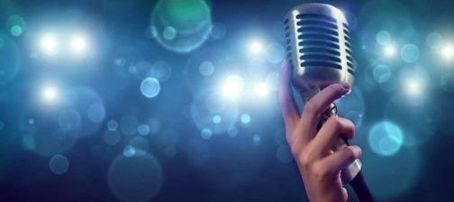 Sänger/Künstler