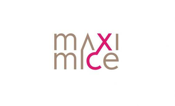 Logo Maximice